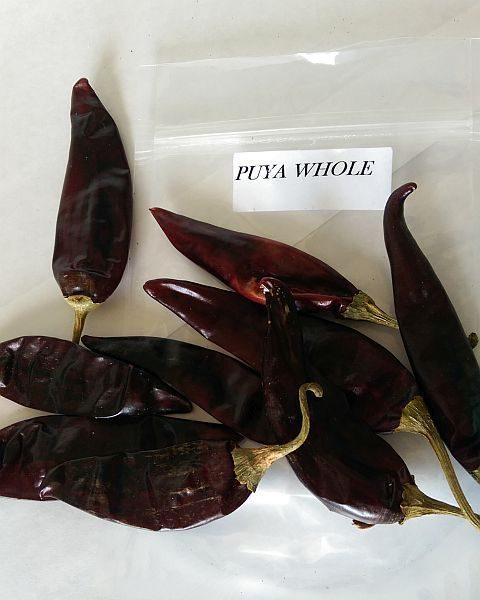 Puya Whole