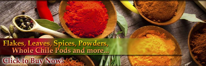 Commercial Wholesale Spices Distributors-Wholesale-Chile and Herbs