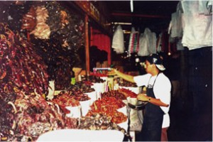 Oaxaca Chile